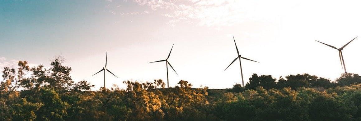 environmentally focused startups