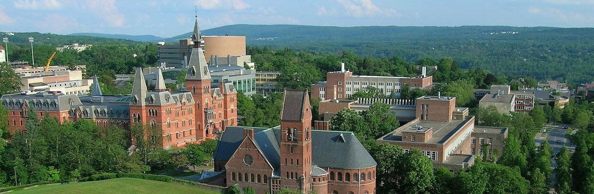 Cornell / Johnson MBA essays